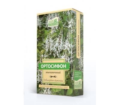 Ортосифон (почечный чай)