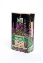 Кипрей узколистный (Иван-чай)